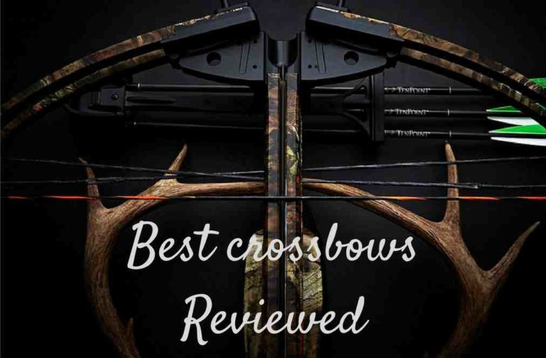 2019 crossbow reviews