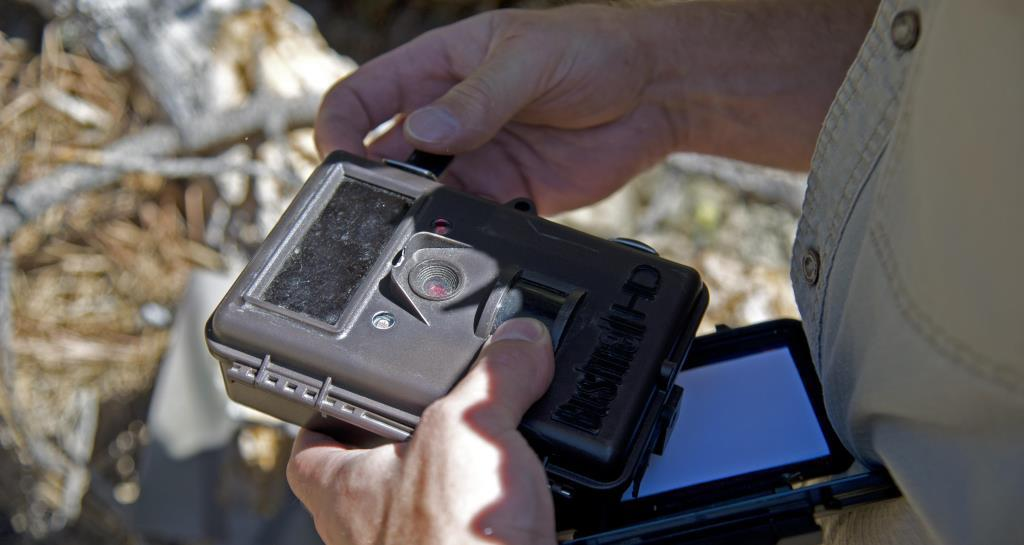 Best Trail Cameras Under $150 - Best budget trail camera