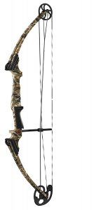 Genesis Original Bow - affordable compound bow