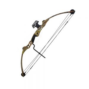 21 Best Compound Bow 2020 (Updated) : Reviews by Experts !