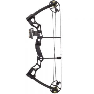 2019 compound bow reviews