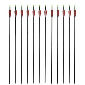 GPP Archery Carbon 30-Inch Targeting/Hunting Arrows