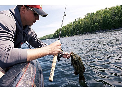 best spinning rods under 50$, 100$ in 2019 for sea water and fresh water