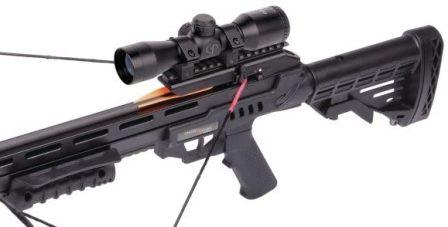 Scope of a Crossbow